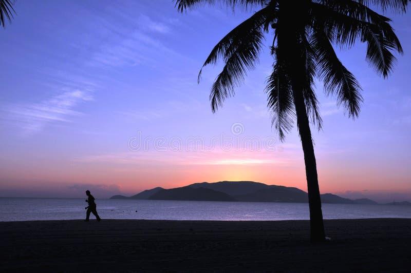 Tropical scenery stock image
