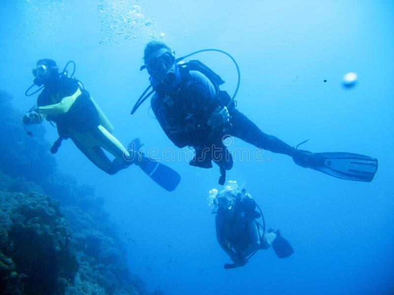 Tropical scuba diving adventure stock image
