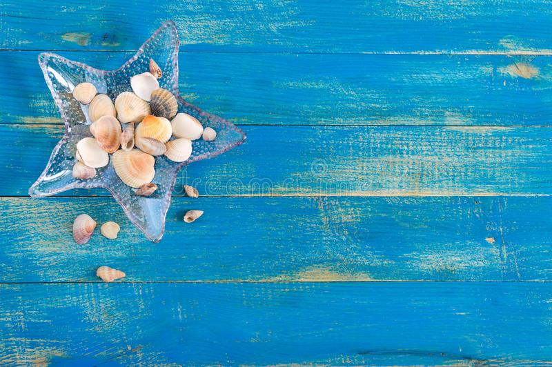 Tropical sea background. Different shells, in a starfish-shaped glass bowl on the blue boards, top view. Free space for royalty free stock photography