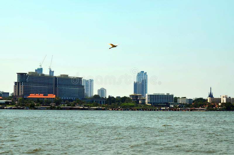 The ever changing Pattaya skyline as seen from Nongplalai, Thailand. royalty free stock image