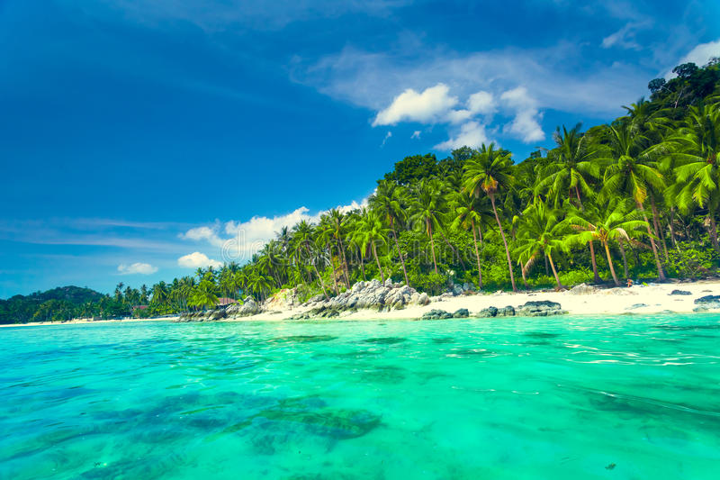 Tropical sea and blue sky in Koh Samui, Thailand. Tropical beach with coconut palm trees. Koh Samui, Thailand stock photo