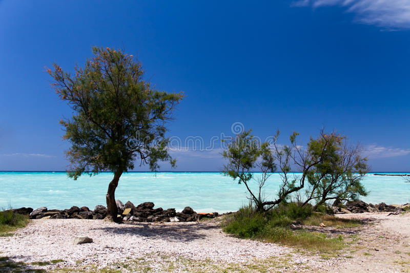 Tropical sea in the summer time stock photo