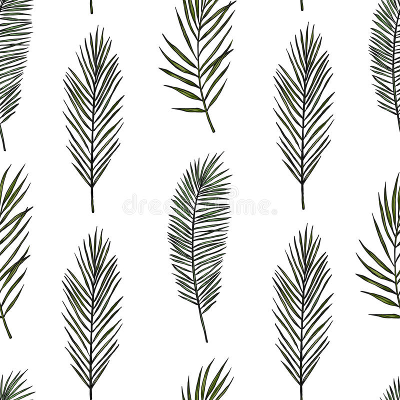 Tropical seamless pattern. Background with palm leaves. Hand drawn vector illustration. Perfect for vector illustration