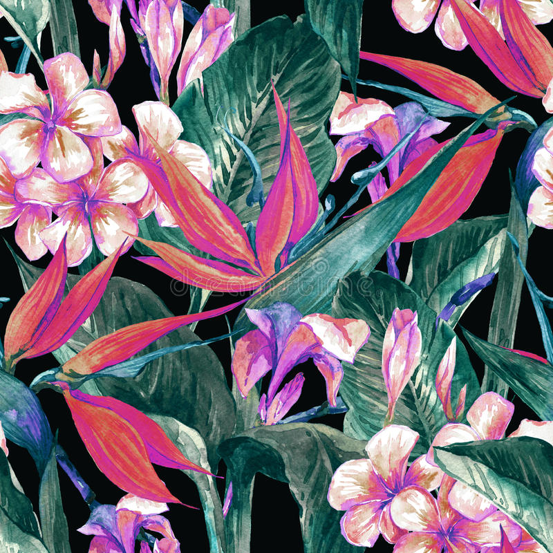 Tropical seamless pattern with exotic flowers. And butterflies royalty free stock photo