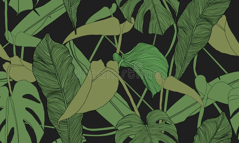 Vector tropical seamless pattern. Exotic green plants on black background. Banana and monstera leaves. Abstract floral seamless pa vector illustration