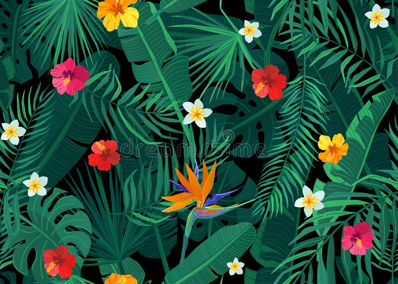 Tropical seamless pattern vector background with exotic palm, banana, monstera leaves and hibiscus, strelitzia stock photo