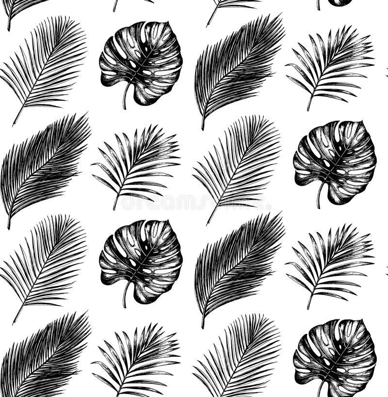 Tropical seamless pattern in vector.Exotic palm leaves and fruits background. Jungle foliage illustration. Hand sketch. royalty free illustration