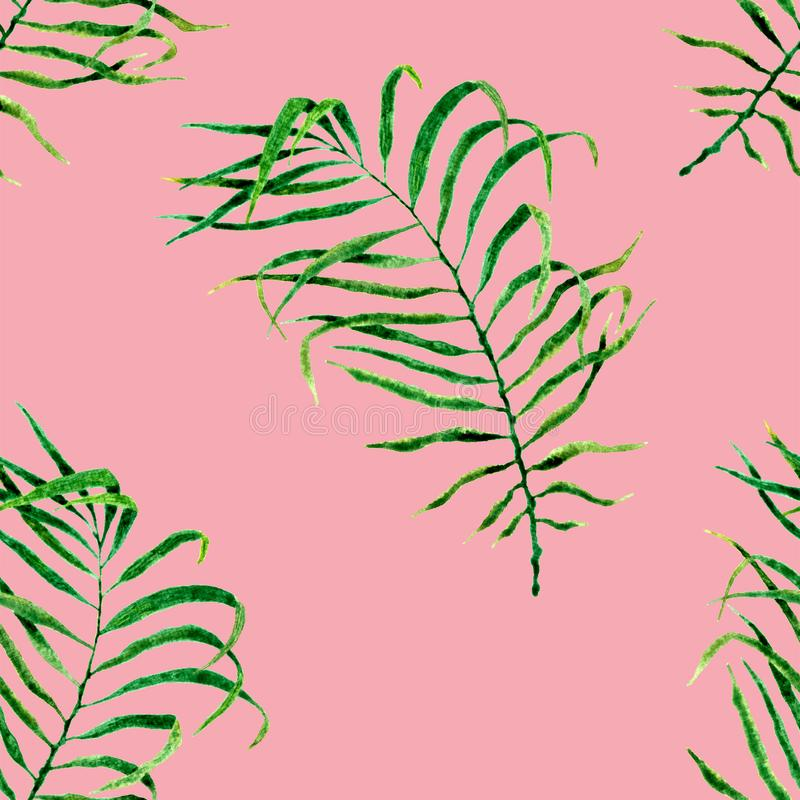 Tropical seamless pattern. Watercolor flapping pal. M leaves, japanese bamboo. Green exotic swimwear design. Summer tropic repeated print. Radiant textile stock illustration