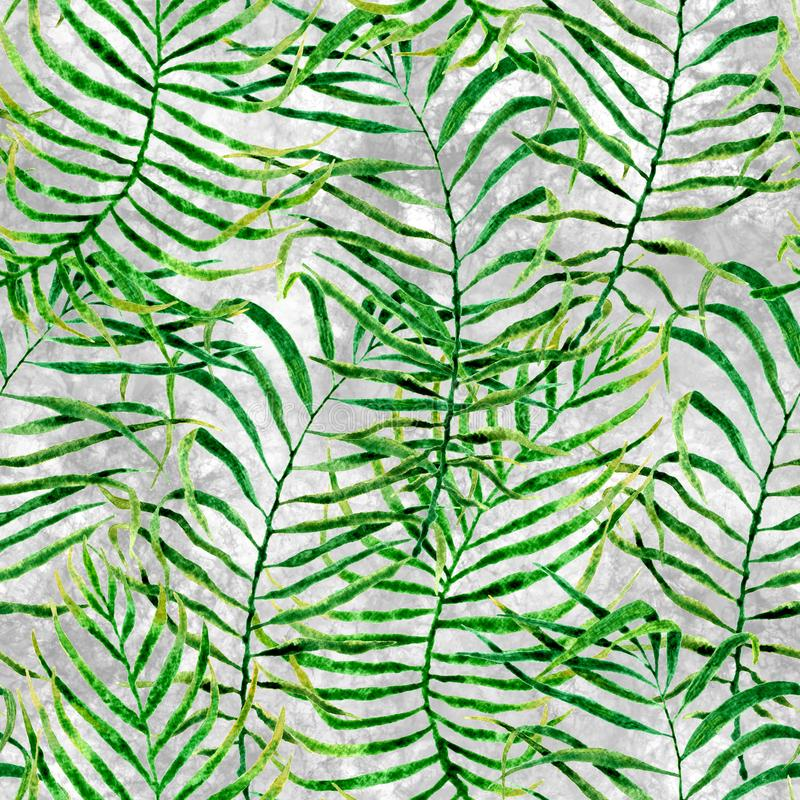 Tropical seamless pattern. Watercolor tangled palm. Leaves, japanese bamboo. Green exotic swimwear design. Summer tropic repeated print. Adorable textile royalty free stock photography