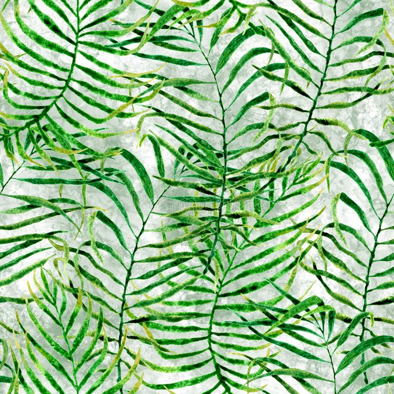 Tropical seamless pattern. Watercolor tangled palm. Leaves, japanese bamboo. Green exotic swimwear design. Summer tropic repeated print. Wonderful textile stock photo