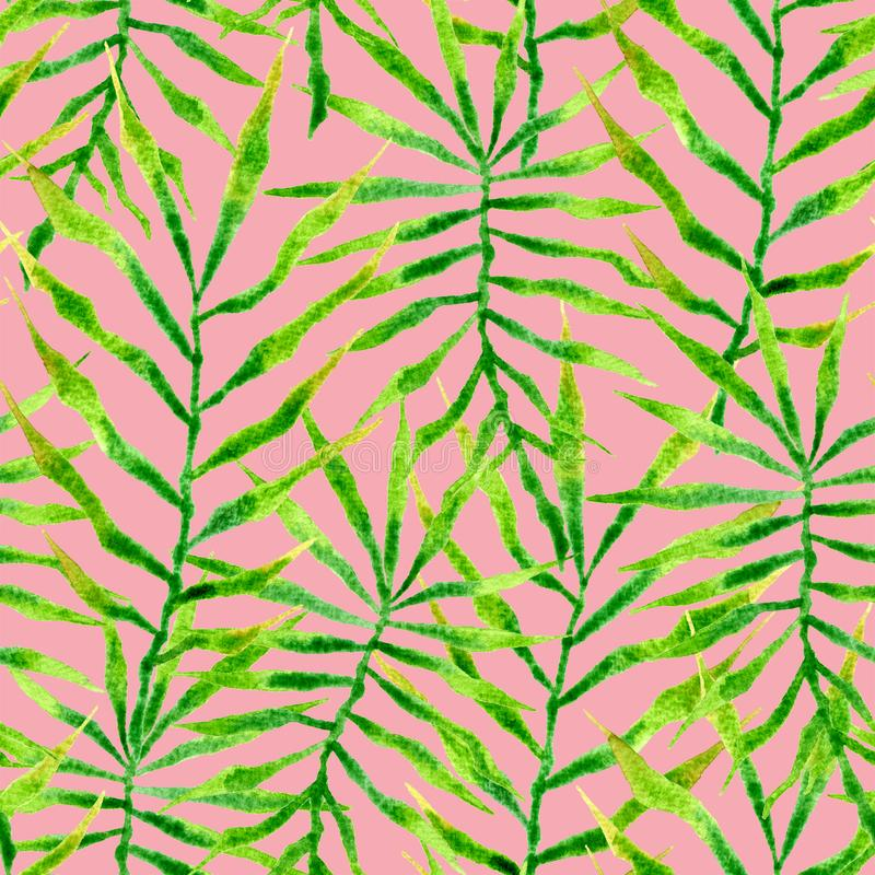 Tropical seamless pattern. Watercolor thorny palm. Leaves, japanese bamboo. Green exotic swimwear design. Summer tropic repeated print. Divine textile stock illustration