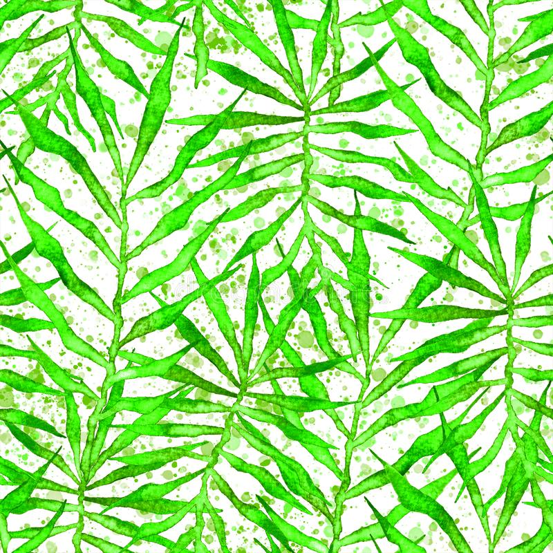 Tropical seamless pattern. Watercolor thorny palm. Leaves, japanese bamboo. Green exotic swimwear design. Summer tropic repeated print. Fetching textile stock illustration