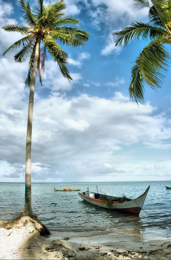 Download Tropical seascape stock photo. Image of nature, boat, beauty - 4807134