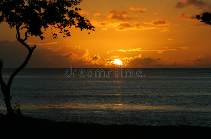 Download Tropical Seies #33 stock photo. Image of silhouette, beach - 461190