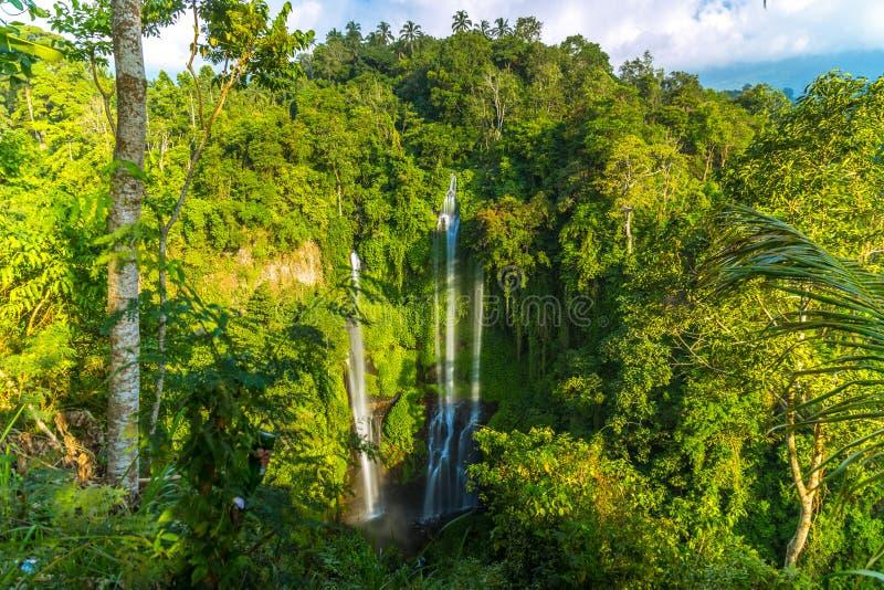 Tropical Sekumpul Waterfalls in Bali island, Indonesia stock photo