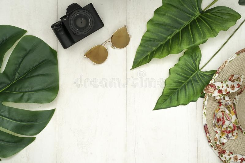 The tropical session stock photography