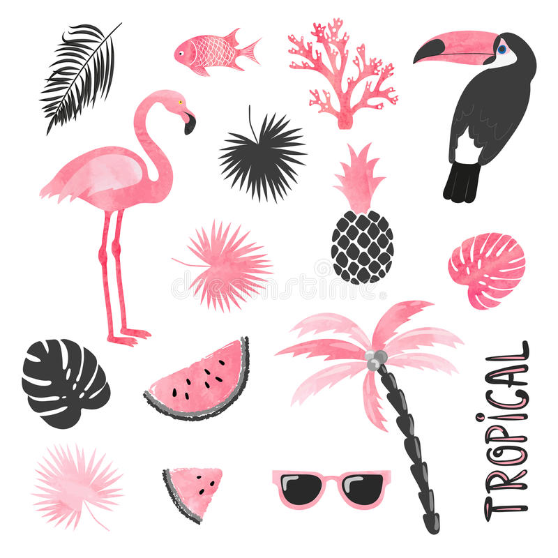 Tropical set in pink and black colors. Flamingo, toucan, watermelon, palm, leaves. stock illustration