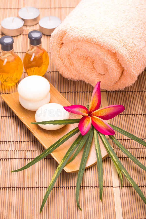 Tropical spa concept stock afbeelding
