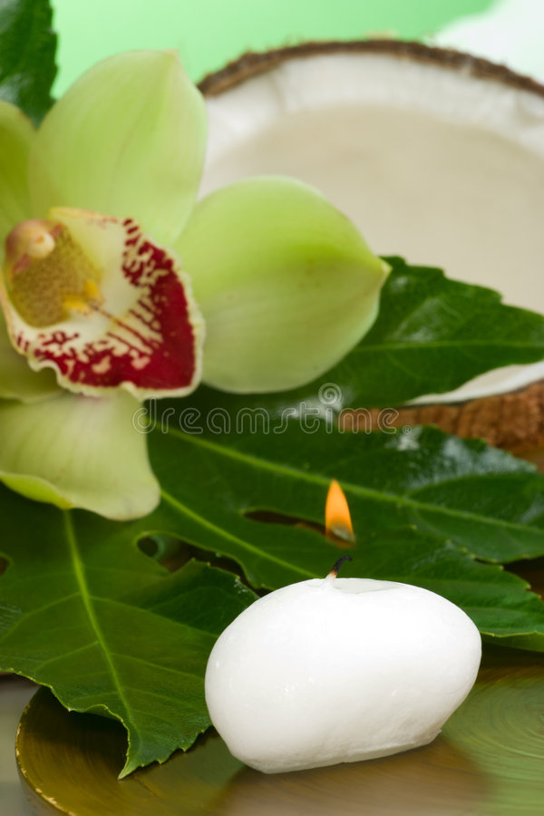 Tropical spa set. Aroma candle, orchid flower (Cymbidium sp.), coconut shell and fresh tropical leaves. Suited for relaxing and health commercials royalty free stock images
