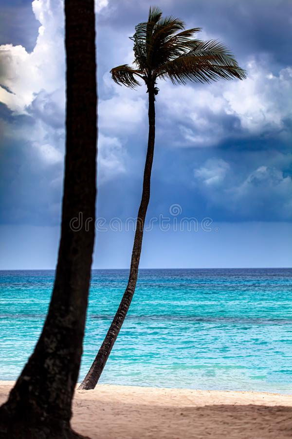 Tropical storm is coming at the empty beach royalty free stock photography