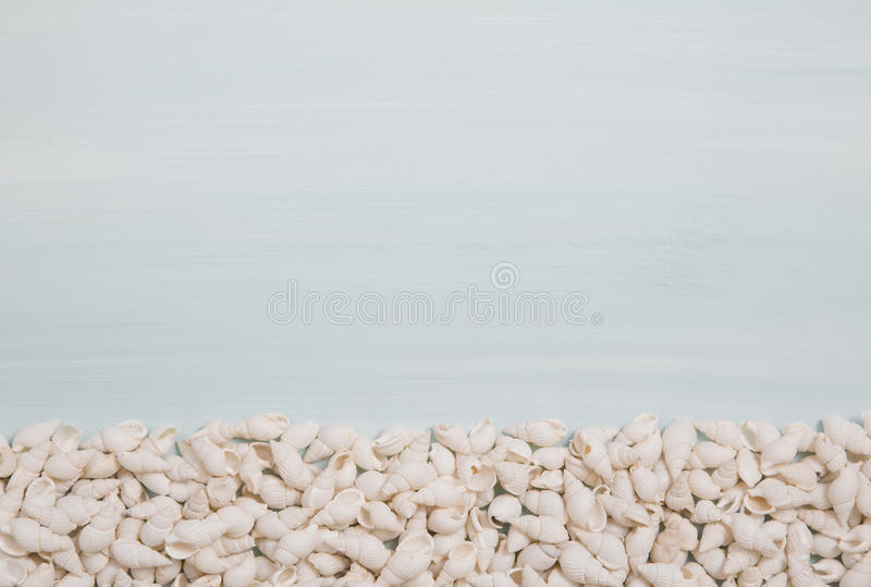 Tropical summer: blue or turquoise wooden background with shells stock photo
