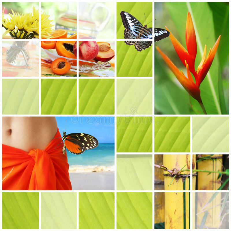 Tropical summer collage. Mosaic of tropical images representing summer, vacation, tropical plants and food stock photography