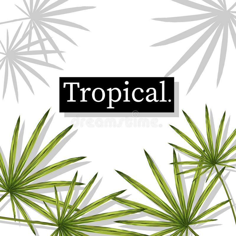 Tropical Summer holiday themed vector background image royalty free illustration