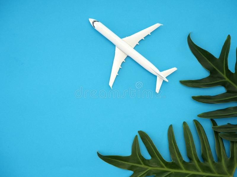 Tropical summer travel sea life style royalty free stock photo