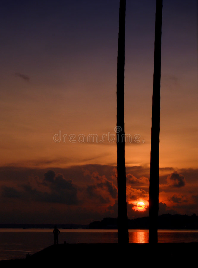 Download Tropical sunrise at beach stock image. Image of black - 4994027