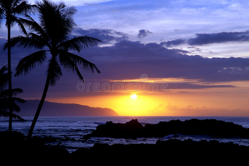 Tropical Sunset 1.3 royalty free stock photo