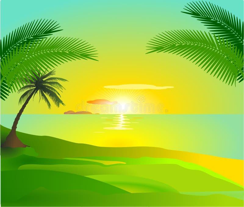 Tropical sunset vector illustration