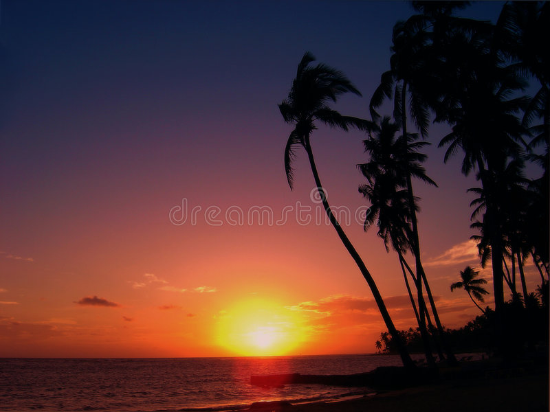 A Tropical sunset stock image