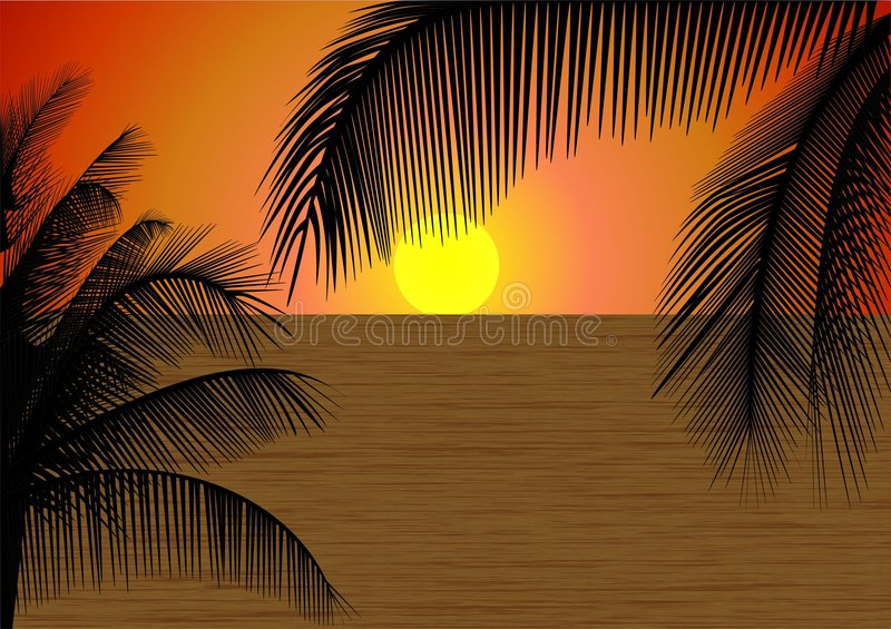 Download Tropical Sunset stock vector. Illustration of exotic, relax - 2215031