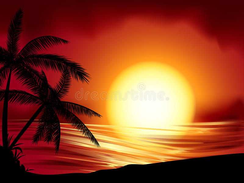 Download Tropical Sunset Royalty Free Stock Images - Image: 24552069