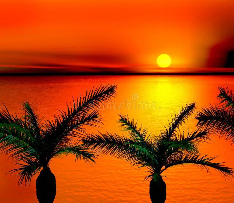 Tropical sunset stock illustration