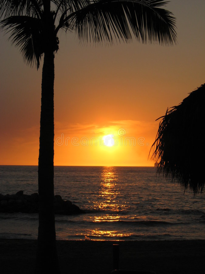Download Tropical Sunset stock image. Image of vacation, sunset - 8178057