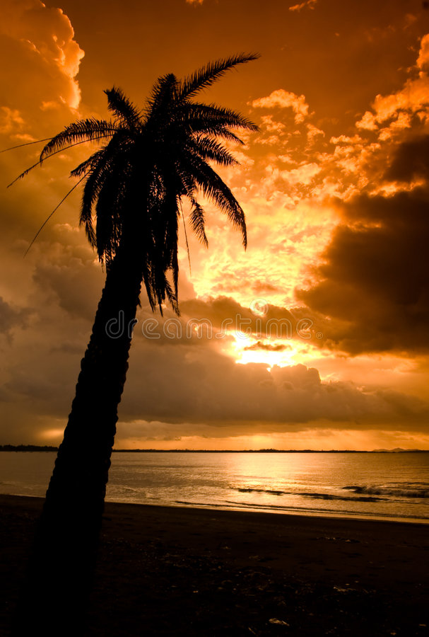 Download Tropical sunset stock photo. Image of relaxation, peaceful - 8540330