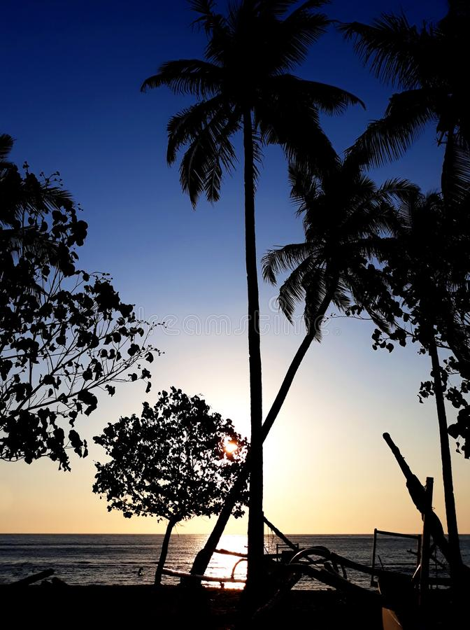 Tropical sunset beach with palms outline royalty free stock images