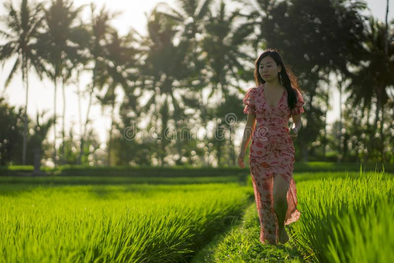 Tropical sunset bliss. Young beautiful and attractive Asian Chinese woman in elegant dress walking on green rice field enjoying. Exotic Summer holidays trip in stock photo