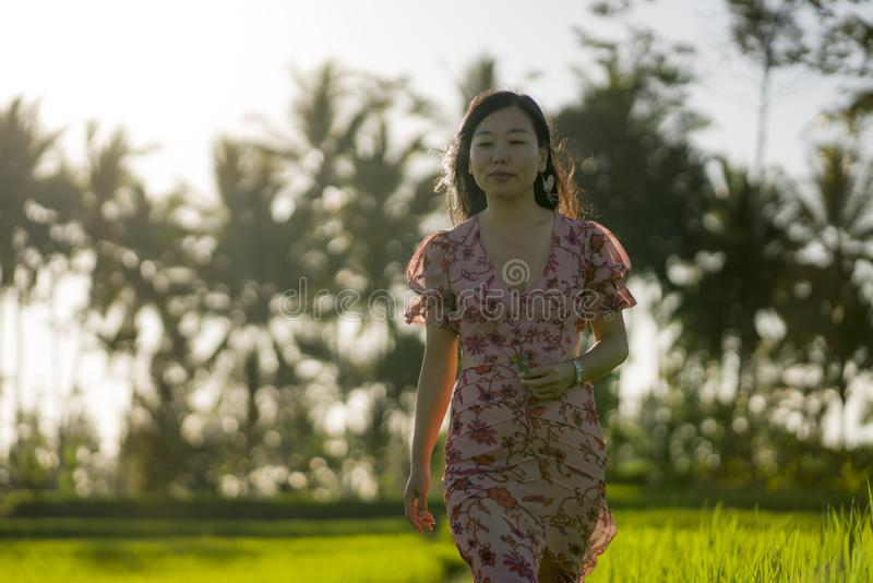 Tropical sunset bliss. Young beautiful and attractive Asian Chinese woman in elegant dress walking on green rice field enjoying. Exotic Summer holidays trip in royalty free stock images