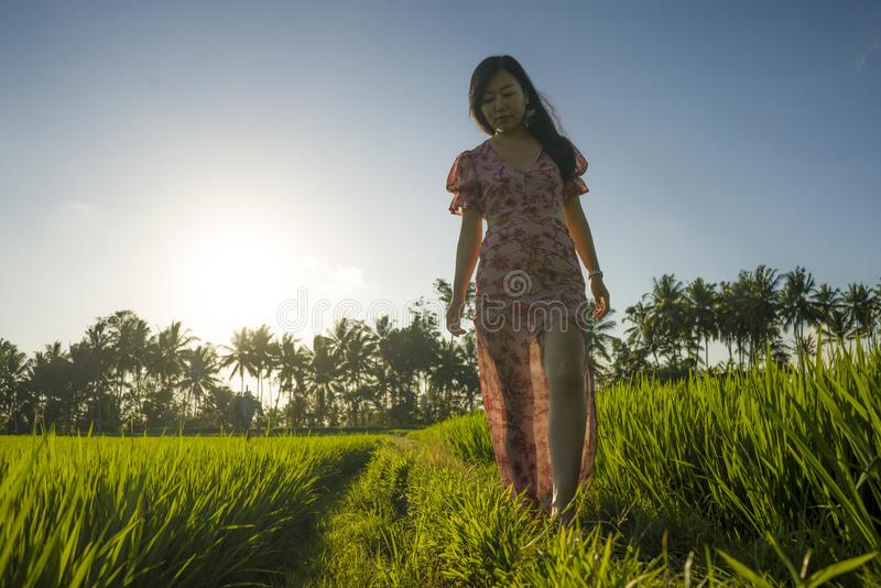 Tropical sunset bliss. Young beautiful and attractive Asian Chinese woman in elegant dress walking on green rice field enjoying. Exotic Summer holidays trip in stock photography