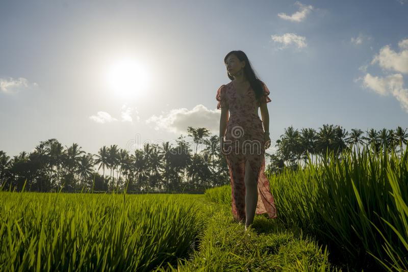 Tropical sunset bliss. Young beautiful and attractive Asian Korean woman in elegant dress walking on green rice field enjoying. Exotic Summer holidays trip in stock photos