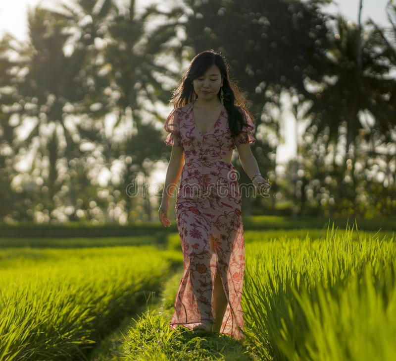 Tropical sunset bliss. Young beautiful and attractive Asian Korean woman in elegant dress walking on green rice field enjoying. Exotic Summer holidays trip in stock images