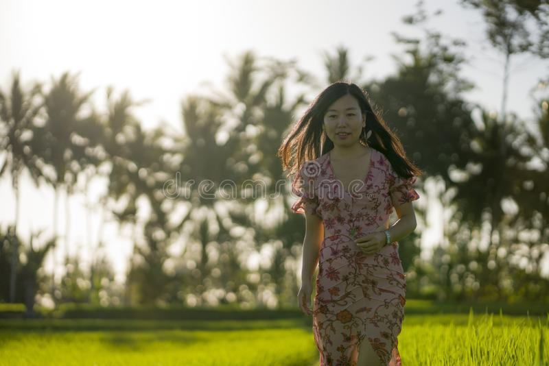 Tropical sunset bliss. Young beautiful and attractive Asian Korean woman in elegant dress walking on green rice field enjoying. Exotic Summer holidays trip in stock photography