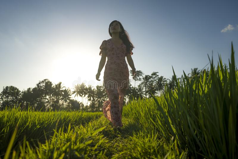 Tropical sunset bliss. Young beautiful and attractive Asian Korean woman in elegant dress walking on green rice field enjoying. Exotic Summer holidays trip in royalty free stock photo