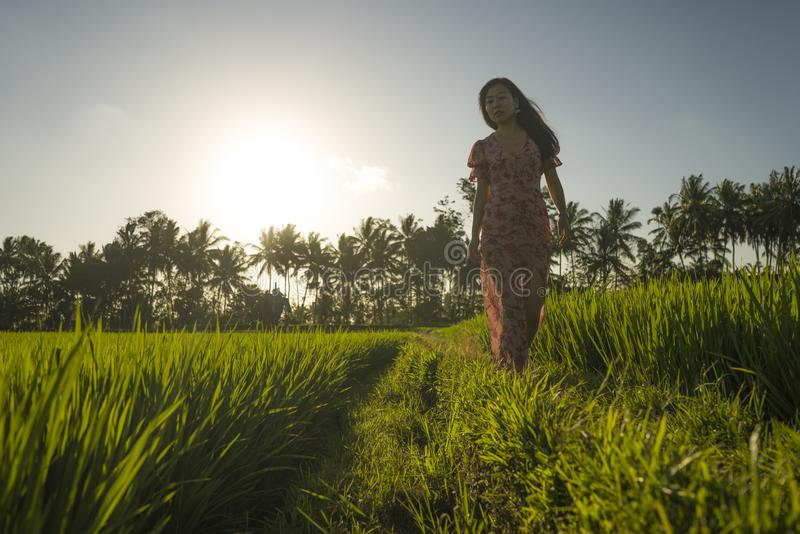 Tropical sunset bliss. Young beautiful and attractive Asian Korean woman in elegant dress walking on green rice field enjoying. Exotic Summer holidays trip in stock image
