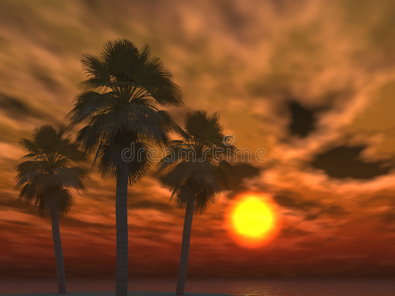Tropical sunset clouds and palms vector illustration