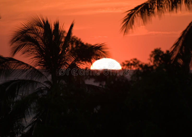 Download Tropical Sunset In Costa Rica Stock Image - Image: 11366035