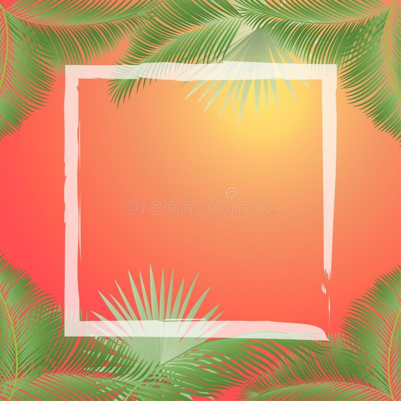 Tropical sunset frame vector illustration