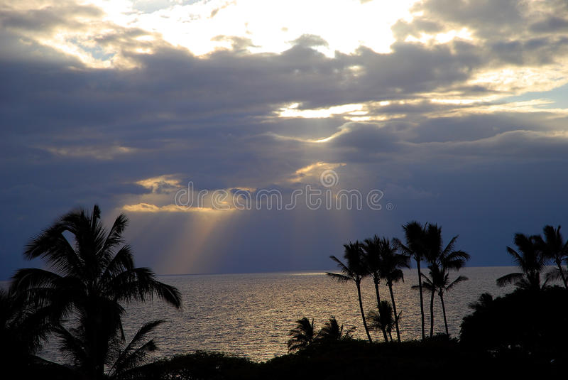 Download Tropical sunset in Hawaii stock image. Image of palm - 36590231